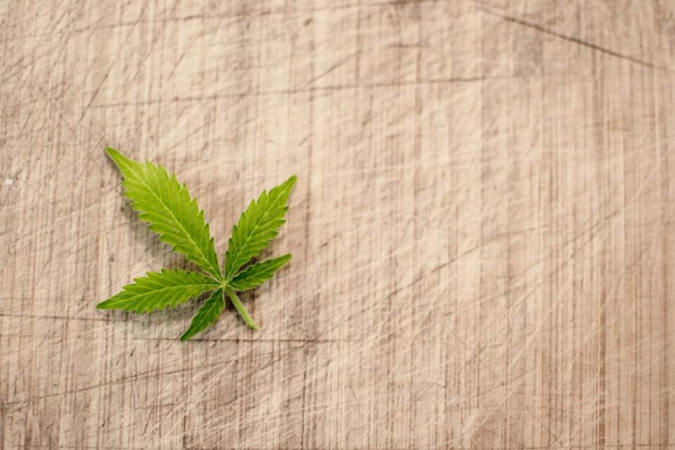 How Can You Get a Top-Quality Cannabis Products At Affordable Prices?